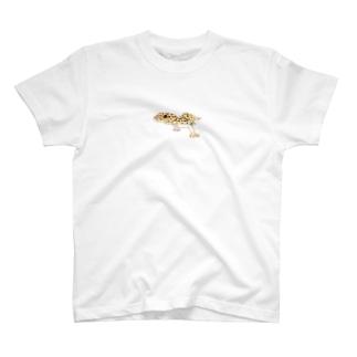 ひょうもん T-shirts