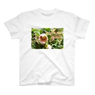 花の写真:クリスマスローズ Flower: Christmas rose/ Hellebore T-shirts