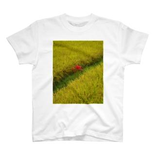 かごしまエモいぜの田園 T-shirts