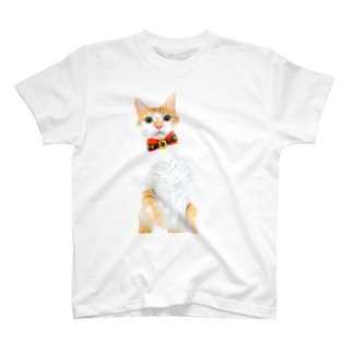 パーフェクトトモゴン T-shirts