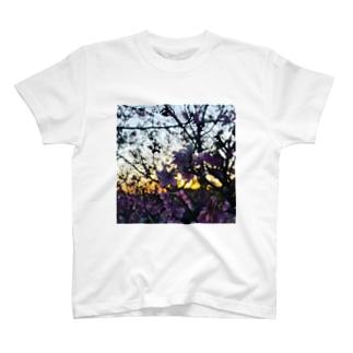 CherryBlossom T-shirts