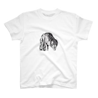 black sheep T-shirts