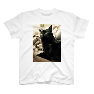 まっくろくろねこ T-shirts
