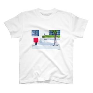 フォトプリントTシャツ T-shirts