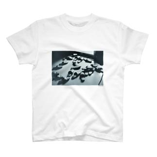 フォトプリントTシャツ2 T-shirts