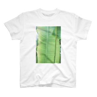 フォトプリントTシャツ3 T-shirts