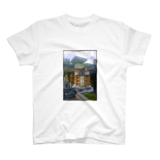 Frank Lloyd Wright T-shirts