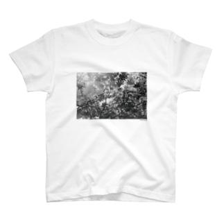 フォトプリントTシャツ4 T-shirts