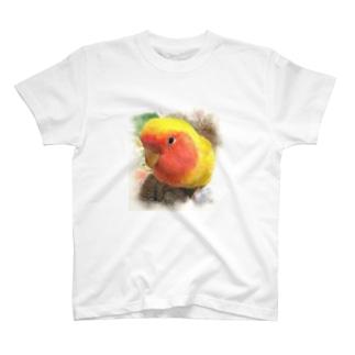picoちゃん T-shirts