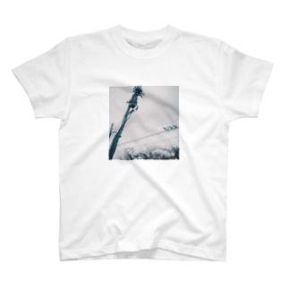 或る川のほとり T-shirts