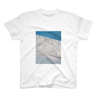 フォトプリントTシャツ10 T-shirts