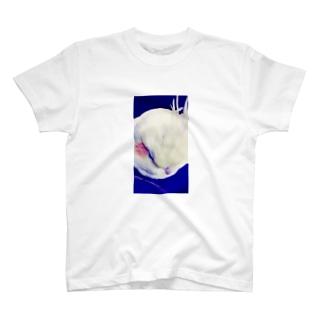 夢・選り取り見鳥 T-shirts
