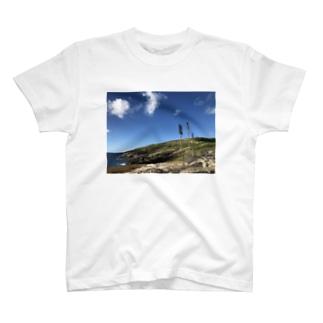 gadkのAloha T-shirts