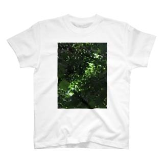 しんりょく T-shirts
