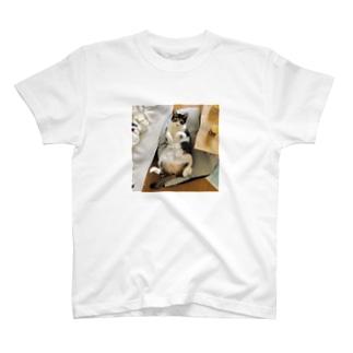 ぎんじさん T-shirts