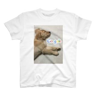 ゴールデンレトリバー T-shirts