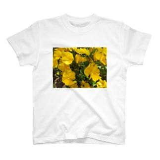 Dreamscapeの輝いているあなたへ・・・ T-shirts