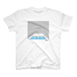 Pool [gray] T-shirts