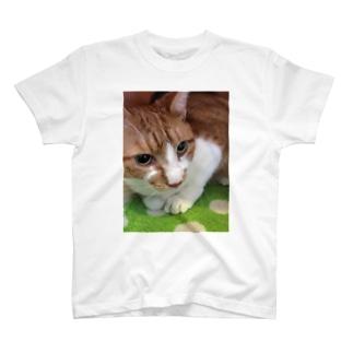 ぽてとさんヾ(◍'౪`◍)ノ゙ T-shirts