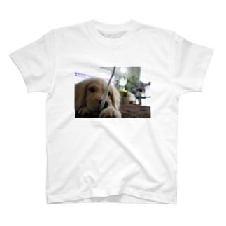 にこり、ひっぱる T-shirts