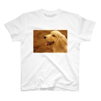 にこりちゃん T-shirts