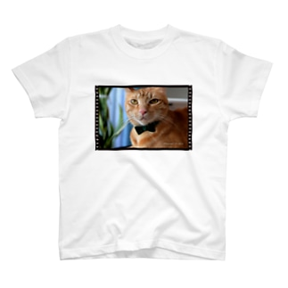 Louis the Movie Star T-shirts