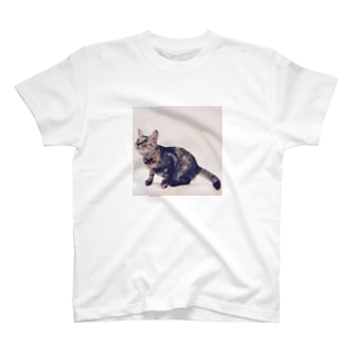 ネコのむぎ T-shirts