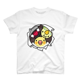 なかよしインコ【まめるりはことり】 Tシャツ