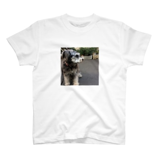 トランプくん T-shirts