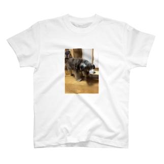 トランプとオリバーのトランプくん T-shirts