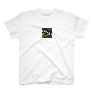 道端に咲くハナニラ T-shirts