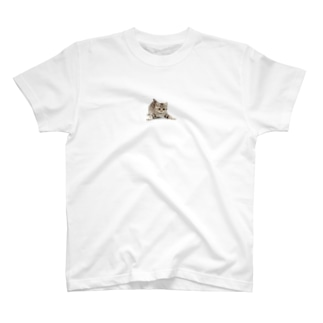 pemilyオリジナルグッズ(子猫ちゃん2) T-shirts