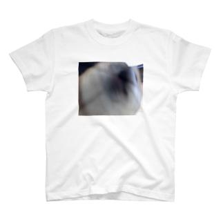 柴犬ラッピー T-shirts