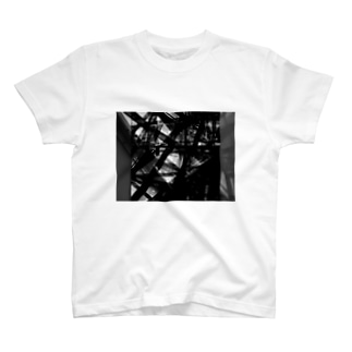 Federim graphic T-shirts