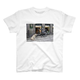 コペンハーゲンの犬 T-shirts