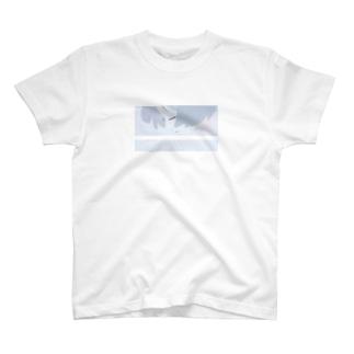 風 T-shirts