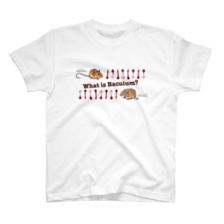 Buculumグッズ T-shirts