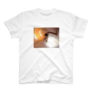 パグのグッズ T-shirts