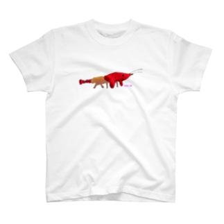エビーヌ T-shirts