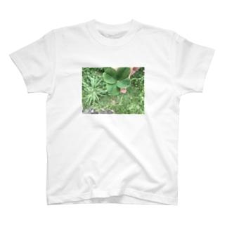 シアワセ四つ葉🍀♡ T-shirts