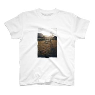 SUNSET_001 T-shirts