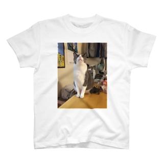こてにゃん(おめめ) T-shirts