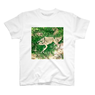 Fantastic Frog -Evergreen Version- T-shirts