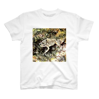 Fantastic Frog -Dry Moss Version- T-shirts