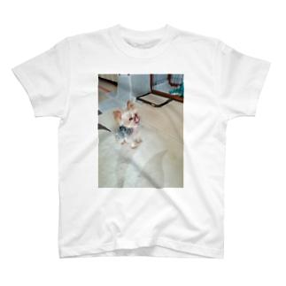 べーってしとる T-shirts