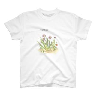 フツーにやる T-shirts