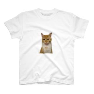 サカキバラさん T-shirts