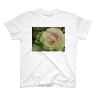 目の保養 T-shirts