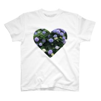 咲き誇ったあじさい T-shirts