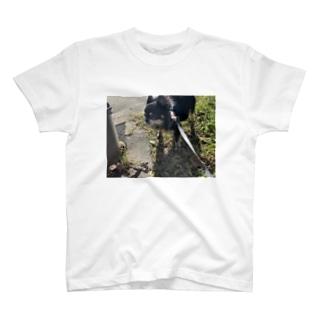 令和元年のさん太郎 T-shirts